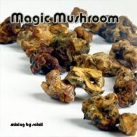 magicmushroom.jpg